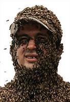 Bees-beard
